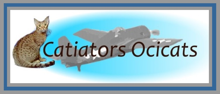 Our Catiators Ocicat logo a F-4 Wildcat and Auxarcs Pralines and Creme